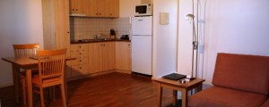 kitchenette in apartment